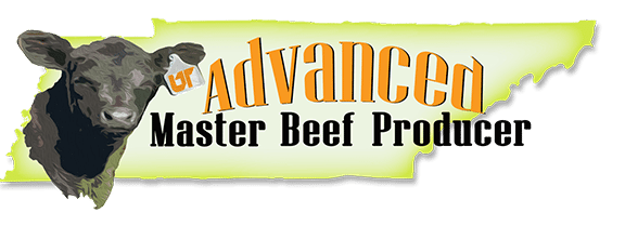 Advanced Master Beef Producer