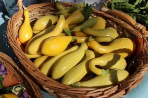 Yellow Summer Squash in a Basket