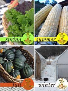 Crop Calendar   All Seasons