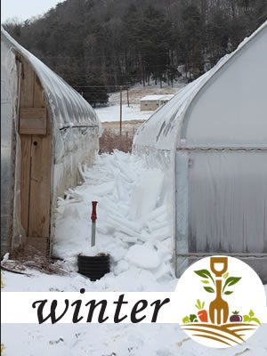 Winter Crop Calendar